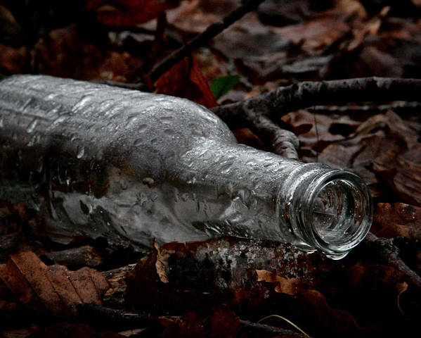 Bottle Poster featuring the photograph A Cold One by Odd Jeppesen