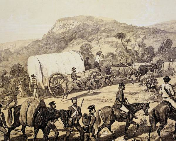 Kafir War Poster featuring the drawing A Convoy Of Wagons by English School