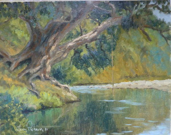 Rivers Poster featuring the painting A Coramandel Stream by Terry Perham
