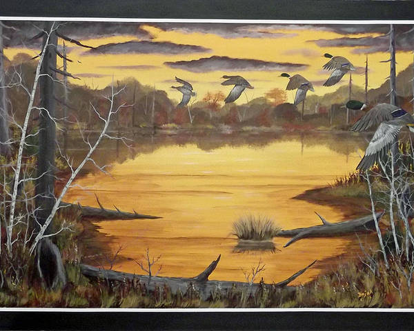Mallards Poster featuring the painting A Quiet Spot by Rudolph Bajak