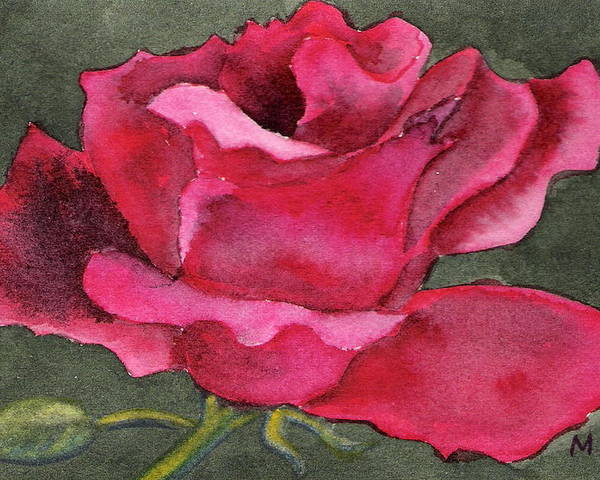 Rose Flower Red Painting Watercolor Still Life Poster featuring the painting A Rose Is A Rose by Marsha Woods