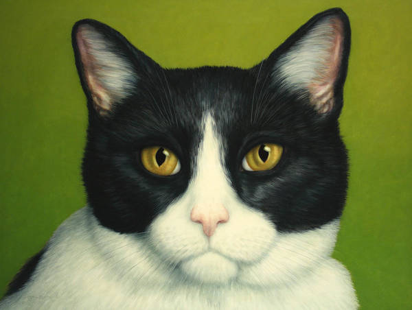 Serious Poster featuring the painting A Serious Cat by James W Johnson