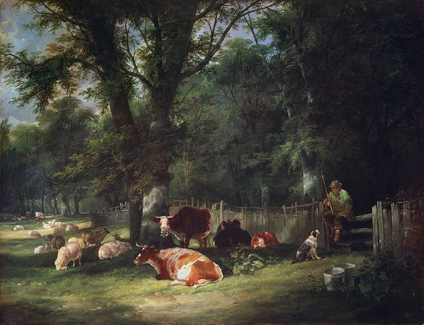 Cattle Poster featuring the painting A Shady Corner by William Snr. Shayer