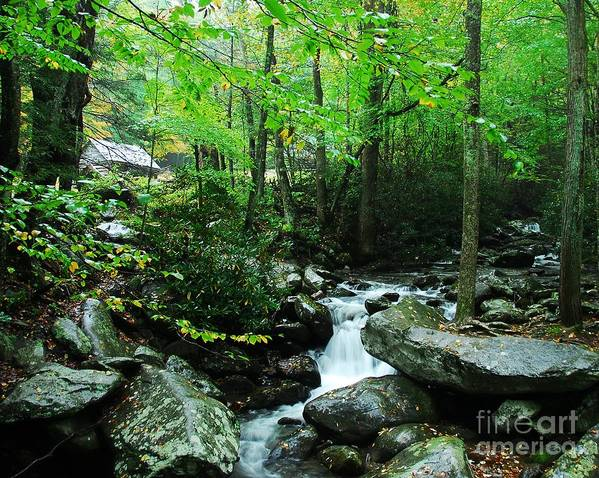 A Smoky Mountain Stream Poster featuring the photograph A Smoky Mountain Stream 2 by Mel Steinhauer