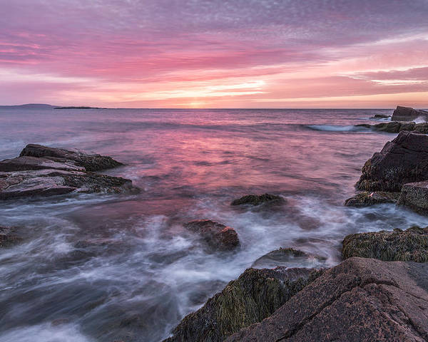 Maine Poster featuring the photograph A Splash Of Orange by Jon Glaser