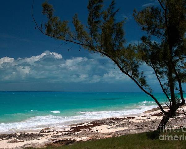 Exuma Poster featuring the photograph A Spot To Sit by Cheryl Hurtak