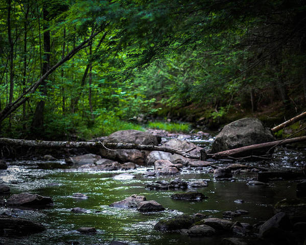 Maine Poster featuring the photograph A Stream In Embden by Sheryl Tennent