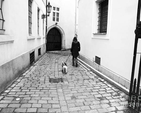 A Walk In Prague Poster featuring the photograph A Walk In Prague by John Rizzuto