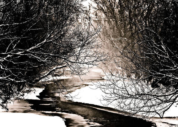 Stream Poster featuring the photograph A Winter Stream 2 by Sarah Cafaro