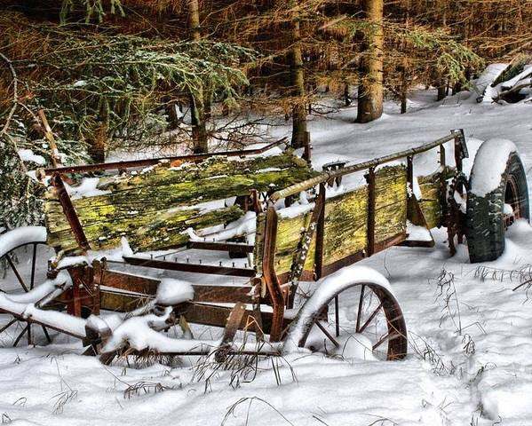 Snow Poster featuring the photograph Abandoned In The Snow by Life With Horses