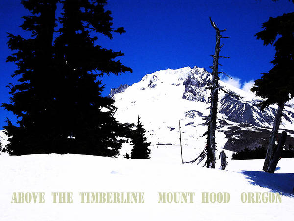 Mt. Hood Poster featuring the digital art Above The Timberline Mt Hood Oregon by Glenna McRae