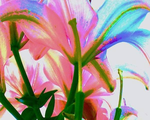 Floral Poster featuring the photograph Abstract Floral by Allen Meyer