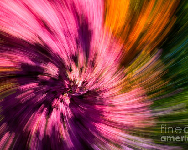 Green Poster featuring the photograph Abstract Flower Spiral by Sarah Cheriton-Jones