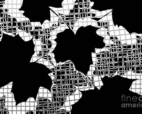Abstract Poster featuring the photograph Abstract Leaf Pattern - Black White Grey by Natalie Kinnear