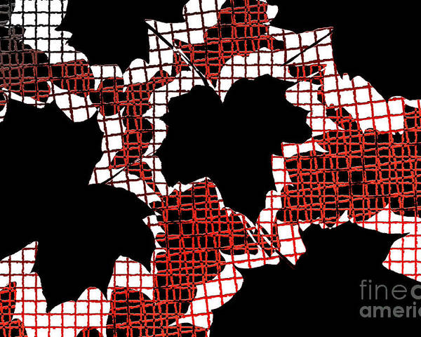 Abstract Poster featuring the photograph Abstract Leaf Pattern - Black White Red by Natalie Kinnear