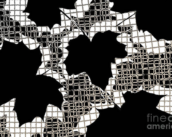 Abstract Poster featuring the photograph Abstract Leaf Pattern - Black White Sepia by Natalie Kinnear