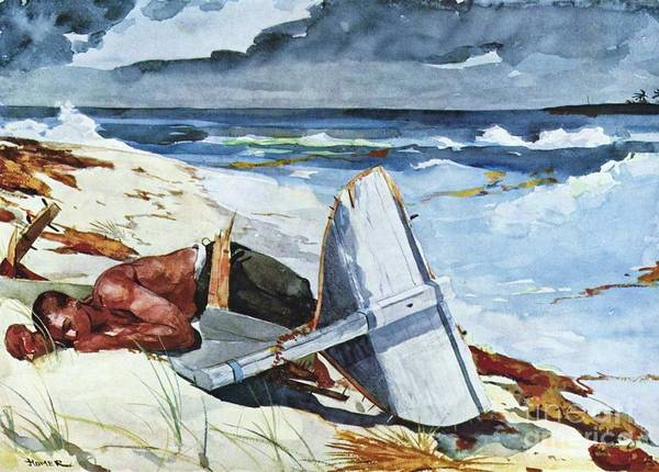 Pd Poster featuring the painting After The Hurricane by Pg Reproductions