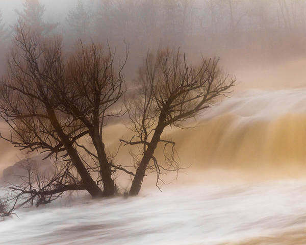 against The Current st. Louis River jay Cooke thomsen Reservoir spring Tree long Exposure spring Melt fog mist nature river mary Amerman Poster featuring the photograph Against The Current by Mary Amerman