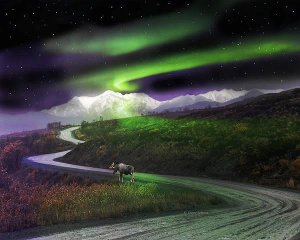 Alaska Poster featuring the digital art Alaska Aurora Denali Highway by Dianne Roberson