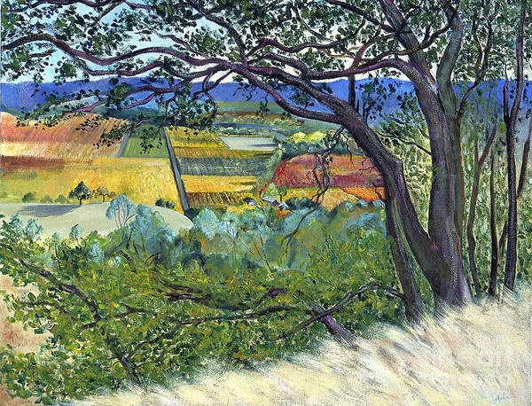 California Landscape Painting Poster featuring the painting Alexander Valley Vinyards by Asha Carolyn Young