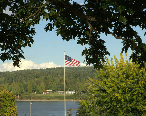 Flag Poster featuring the photograph Ameican Flag by Chuck Overton