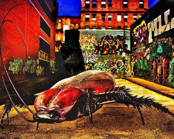 Graffiti Poster featuring the digital art American Cockroach by Bob Orsillo