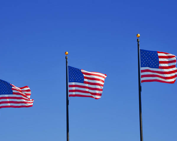 Three Poster featuring the photograph American Flags - Navy Pier Chicago by Christine Till