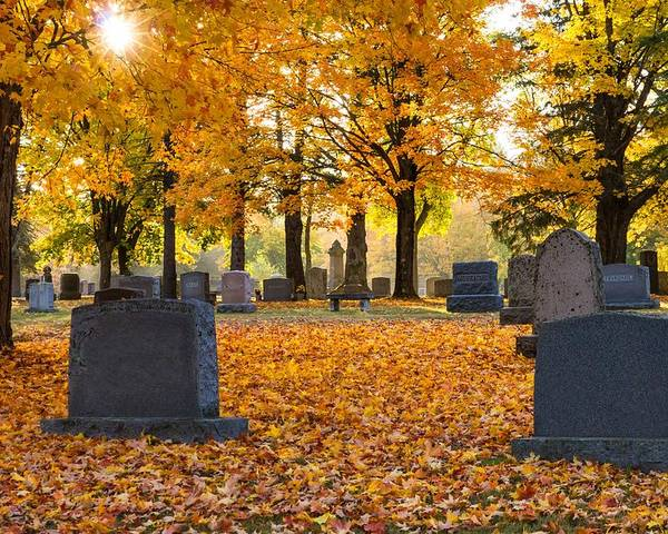 Forest Hill Cemetery Poster featuring the photograph Forest Hill Autumn Light by Mary Amerman