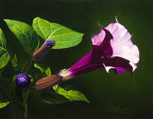 Floral Poster featuring the painting Anastacias Datura by Gary Hernandez
