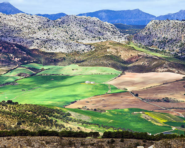 Agriculture Poster featuring the photograph Andalucia Landscape In Spain by Artur Bogacki