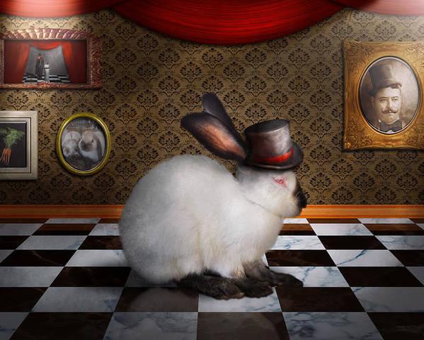 Rabbit Poster featuring the photograph Animal - The Rabbit by Mike Savad