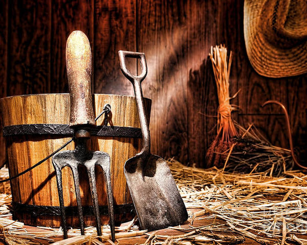 Gardening Poster featuring the photograph Antique Gardening Tools by Olivier Le Queinec