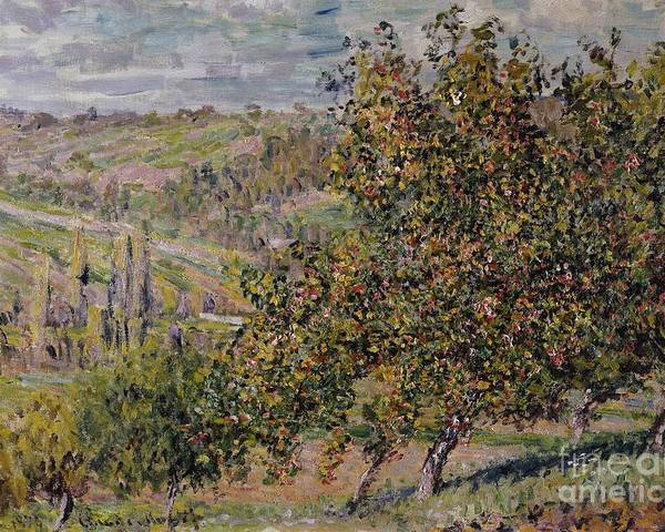 Apple Blossom; Blossom; Blossoming; Spring; Seasons; Springtime; Landscape; Rural; Countryside; Tree; Trees; Impressionist Poster featuring the painting Apple Blossom by Claude Monet