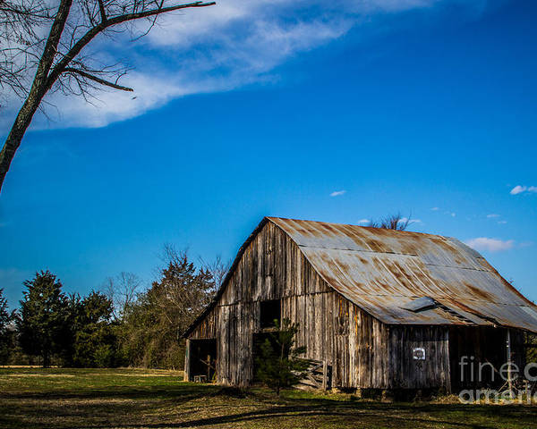 Barns Poster featuring the photograph Arkansas Barn And Blue Skies by Jim McCain