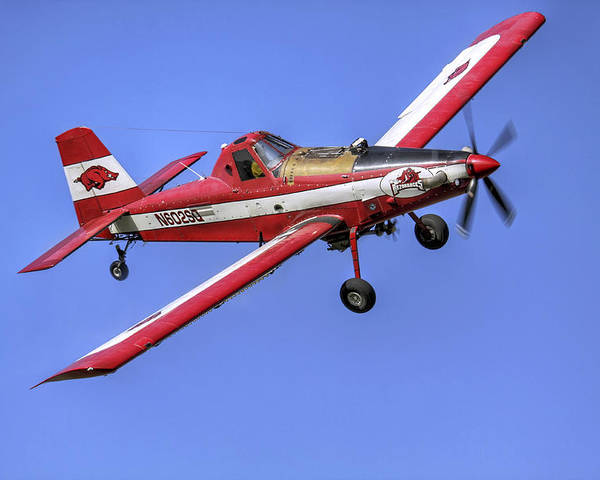 Crop Poster featuring the photograph Arkansas Razorbacks Air Tractor by Jason Politte