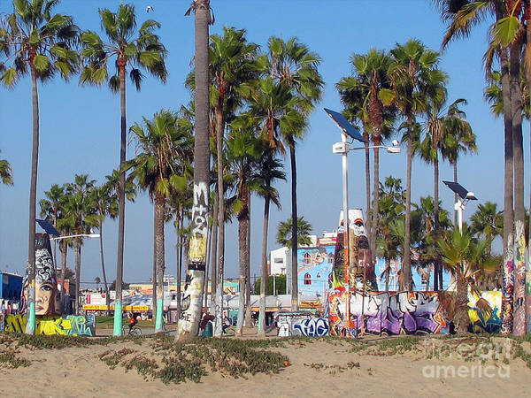 Graffiti Poster featuring the photograph Art Of Venice Beach by Kelly Holm