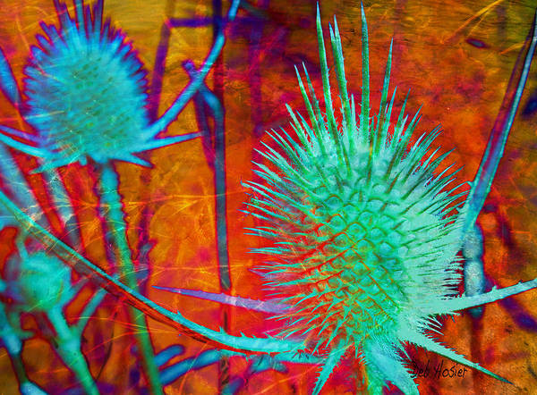 Abstract Poster featuring the digital art Art Thistles by Deb Hosier