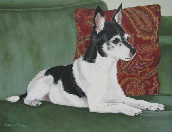 Dog Poster featuring the painting Ashley On Her Sofa by Sandra Chase