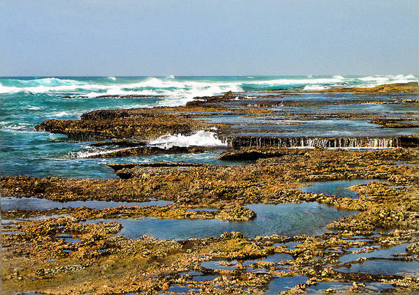 Sea Poster featuring the photograph At The Sea by Ronel Broderick