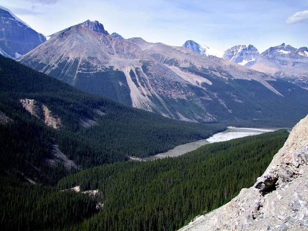 George Cousins Poster featuring the photograph Athabasca River Valley by George Cousins