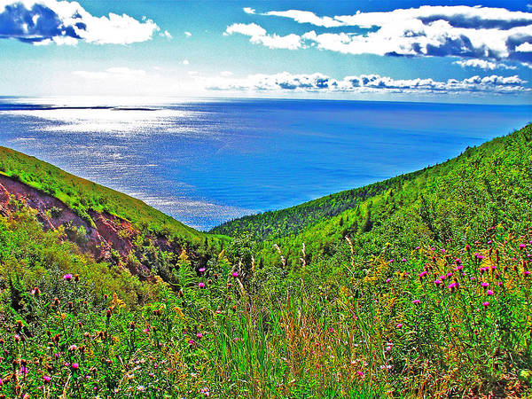 Atlantic Ocean View Point From Cape Breton Highlands National Park Poster featuring the photograph Atlantic Ocean View Point From Cape Breton Highlands National Park-nova Scotia by Ruth Hager