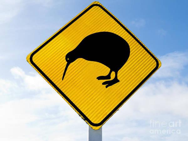 Animal Poster featuring the photograph Attention Kiwi Crossing Road Sign by Stephan Pietzko