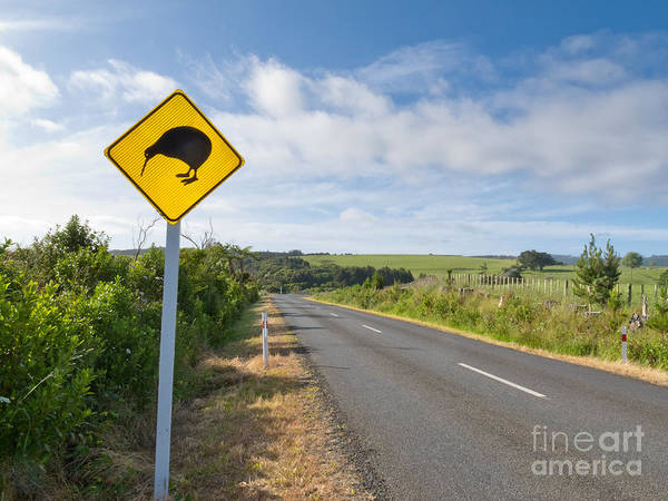 Animal Poster featuring the photograph Attention Kiwi Crossing Roadsign At Nz Rural Road by Stephan Pietzko