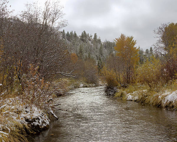 Autumn Poster featuring the photograph Autumn At Prickly Pear Creek by Dana Moyer
