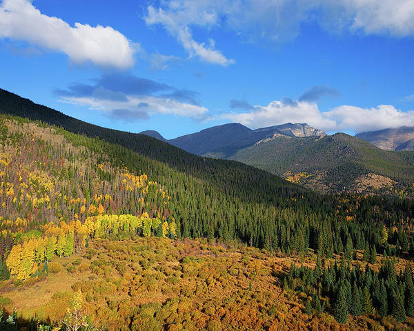 Scenics Poster featuring the photograph Autumn Color In Colorado Rockies by A L Christensen