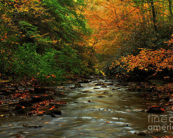 Landscape Poster featuring the photograph Autumn Creek by Melissa Petrey