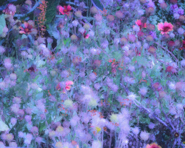 Blue Poster featuring the photograph Autumn Flowers In Blue by Angela Stanton