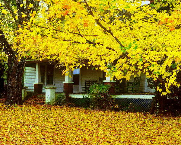 House Poster featuring the photograph Autumn Homestead by Rodney Lee Williams