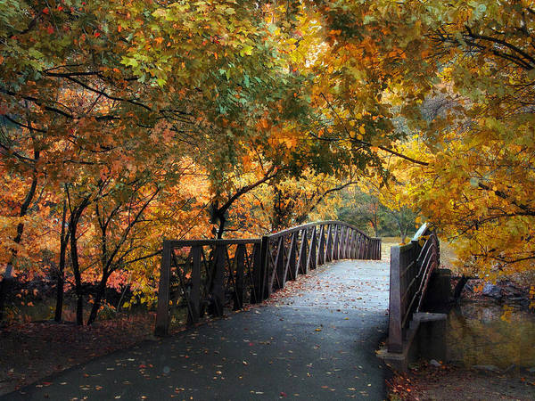 Autumn Poster featuring the photograph Autumn Overpass by Jessica Jenney