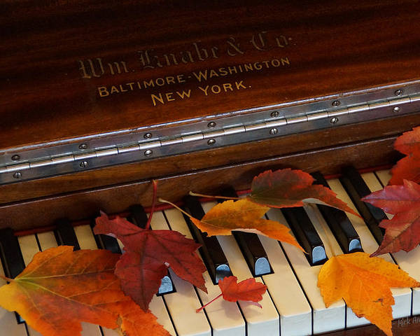Autumn Poster featuring the photograph Autumn Piano 1 by Mick Anderson
